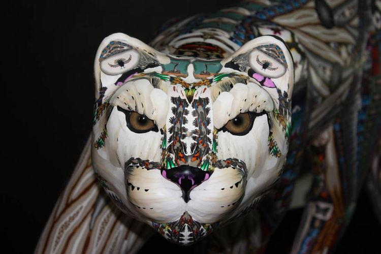 Wild Cat by Adam Rees - search and link Sculpture with SculptSite.com