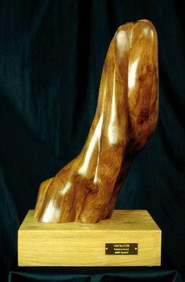 Undatus by Judith Copeland - search and link Sculpture with SculptSite.com