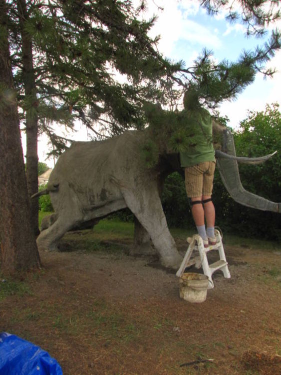 Life size African Elephant by Edward Kitt - search and link Sculpture with SculptSite.com